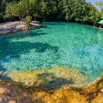 emerald-pool-is-unseen-pool-in-mangrove-forest-at-krab-1024x682