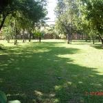 activities-area