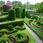 nong-nooch-tropical-garden-o44