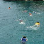 f1dc3asnorkeling
