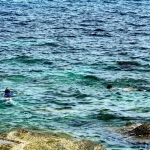 snorkeling-at-frontbeach