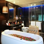 deluxe-jacuzzi-bathroom-1-1024x682