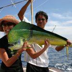 phuket_fish_1