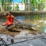 krokodyli-show