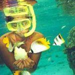 snorkeling01_s