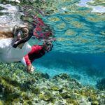 snorkeling-coral-reef