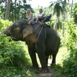 elephant-trekking-koh-samui