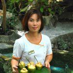 hot-spring-krabi-mini-coconut