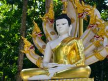 Čínský chrám Wat Paa Sang Tham