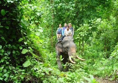 Jízda na slonech & Safari Park
