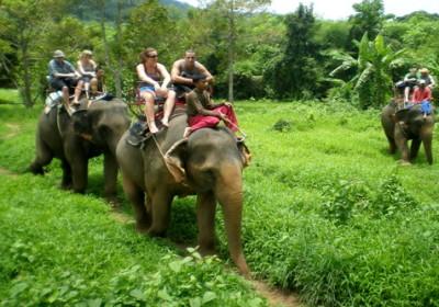 Celodenní Eco dobrodružství (sloni, vodopády, šnorchlování)
