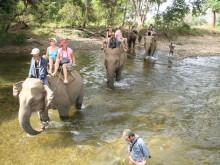 Řeka Kwai & Jízda na slonech včetně oběda