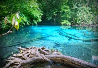 Džungle Safari, Horké prameny & Crystal Pool